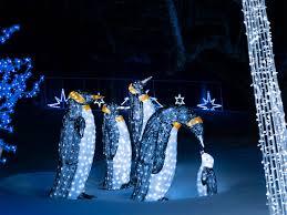 illumi pinguins