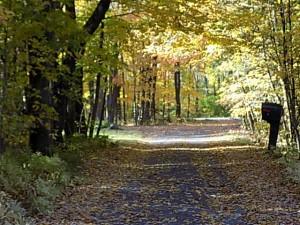 lac brome chemin